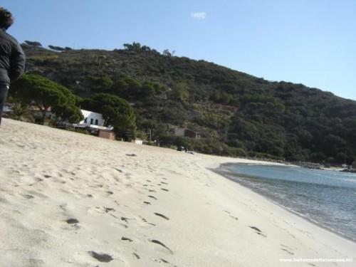 La spiaggia di Cavoli – La spiaggia del divertimento